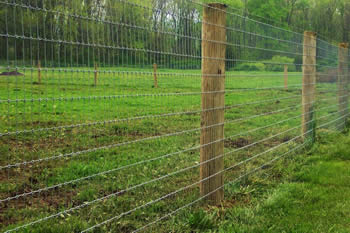 High tensile fence connected with wooden posts for farmland