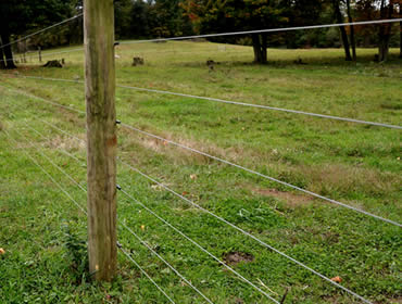 High Tensile Wire For Vineyard And Livestock Fencing